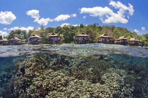 Raja Ampat - Coral Triangle