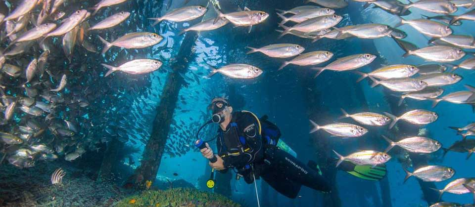 Raja Ampat Diving Safety