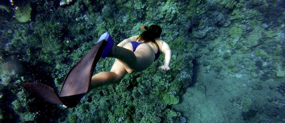 Snorkeling at Raja Ampat Papua paradise