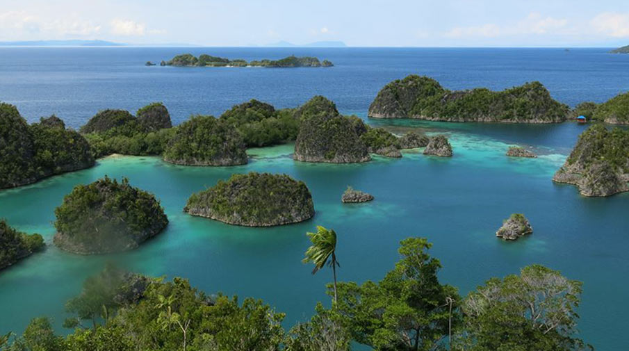 View from Raja Ampat