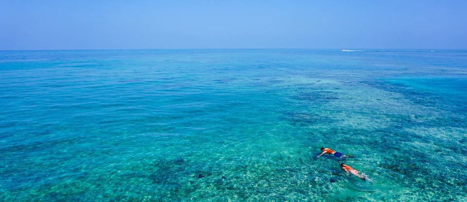 snorkeling-at-paradise-raja-ampat