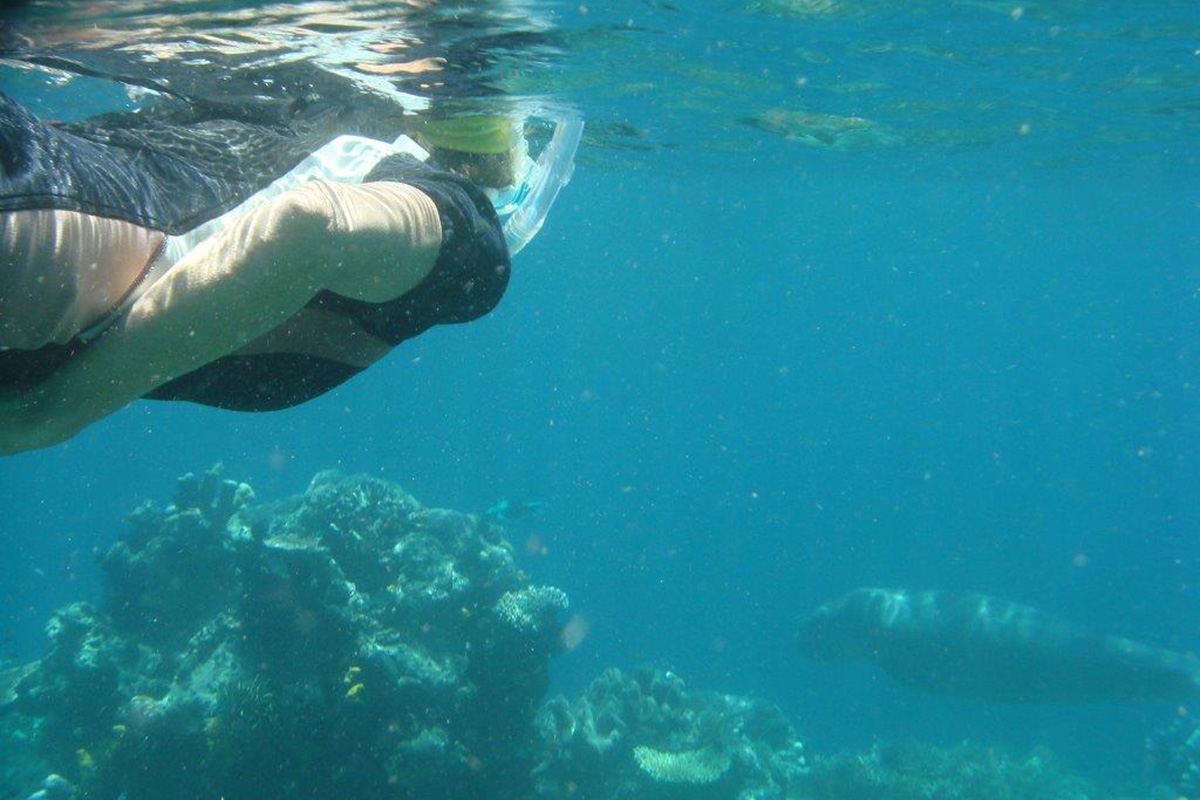 Martha from Switzerland snorkeling with a dugong at Papua Paradise Eco Resort in Raja Ampat