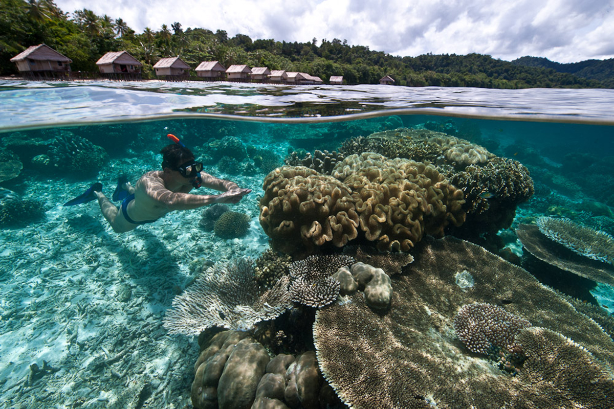 What to Do When You're Not Diving in Raja Ampat