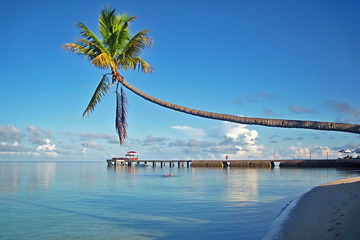 Wakatobi Islands, Top 10 Dive Spots in Indonesia