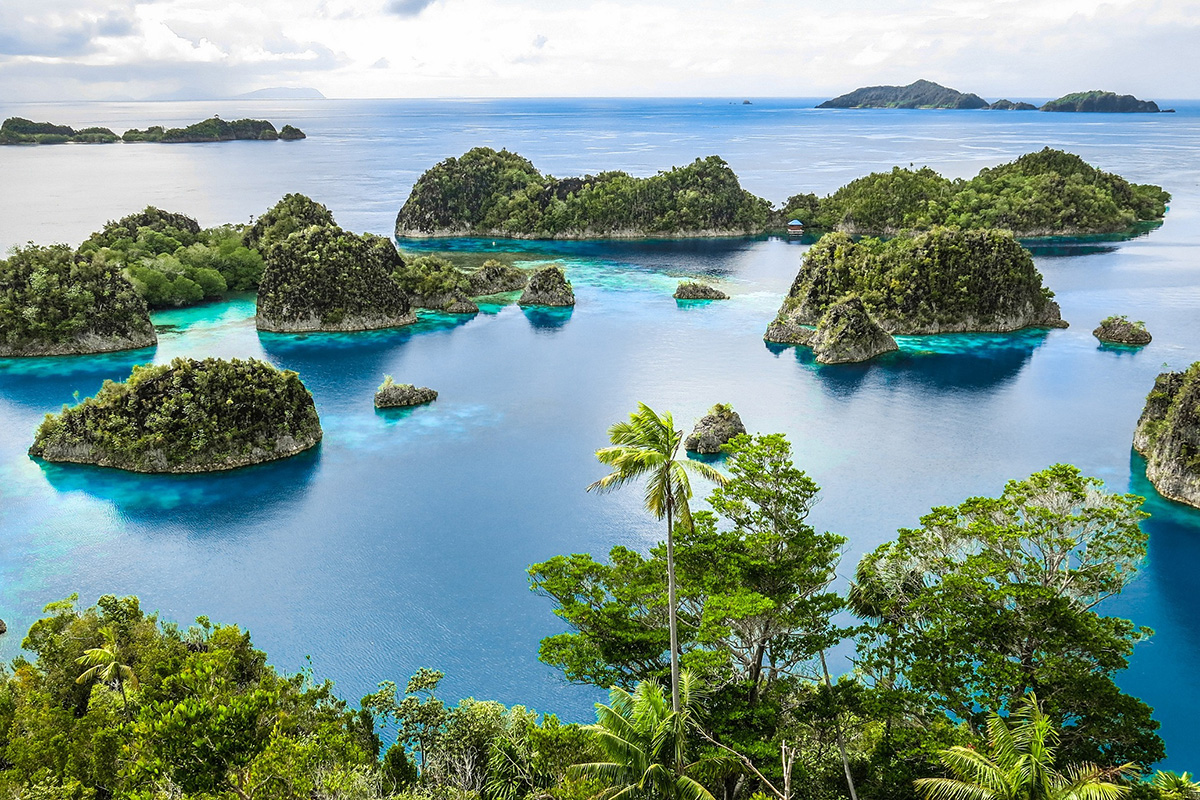Top 5 Dive Sites in Raja Ampat