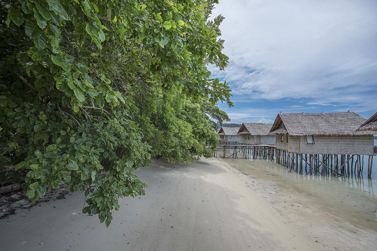 Papua Paradise Eco Resort in Raja Ampat