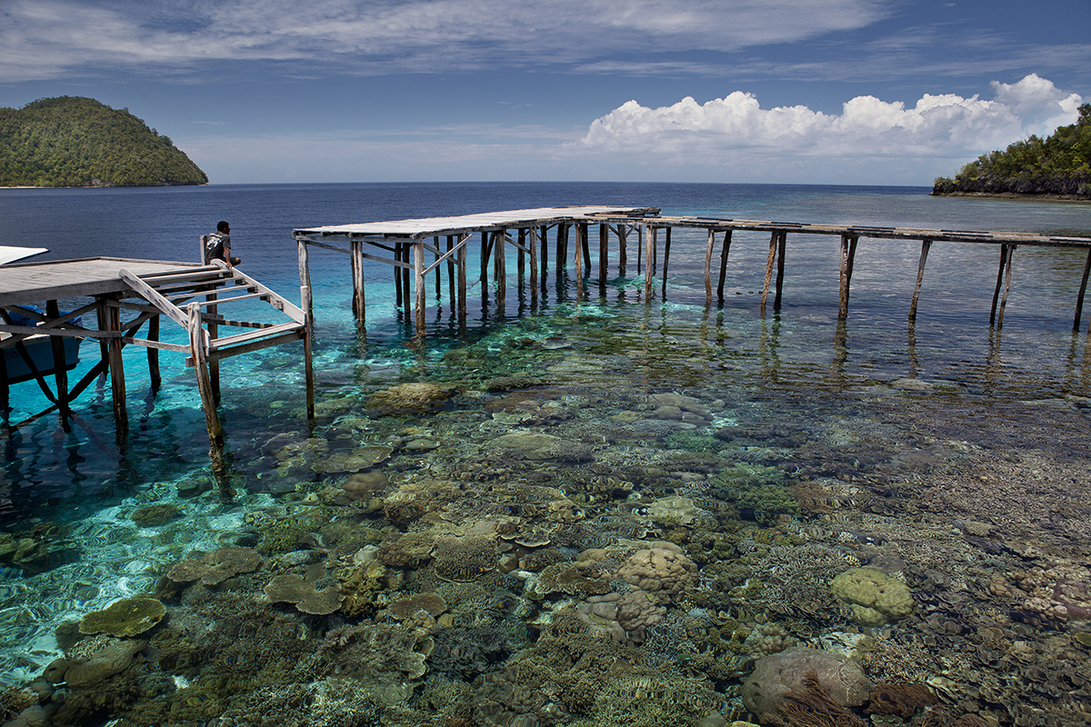 When is the Best Time to Dive in Raja Ampat?