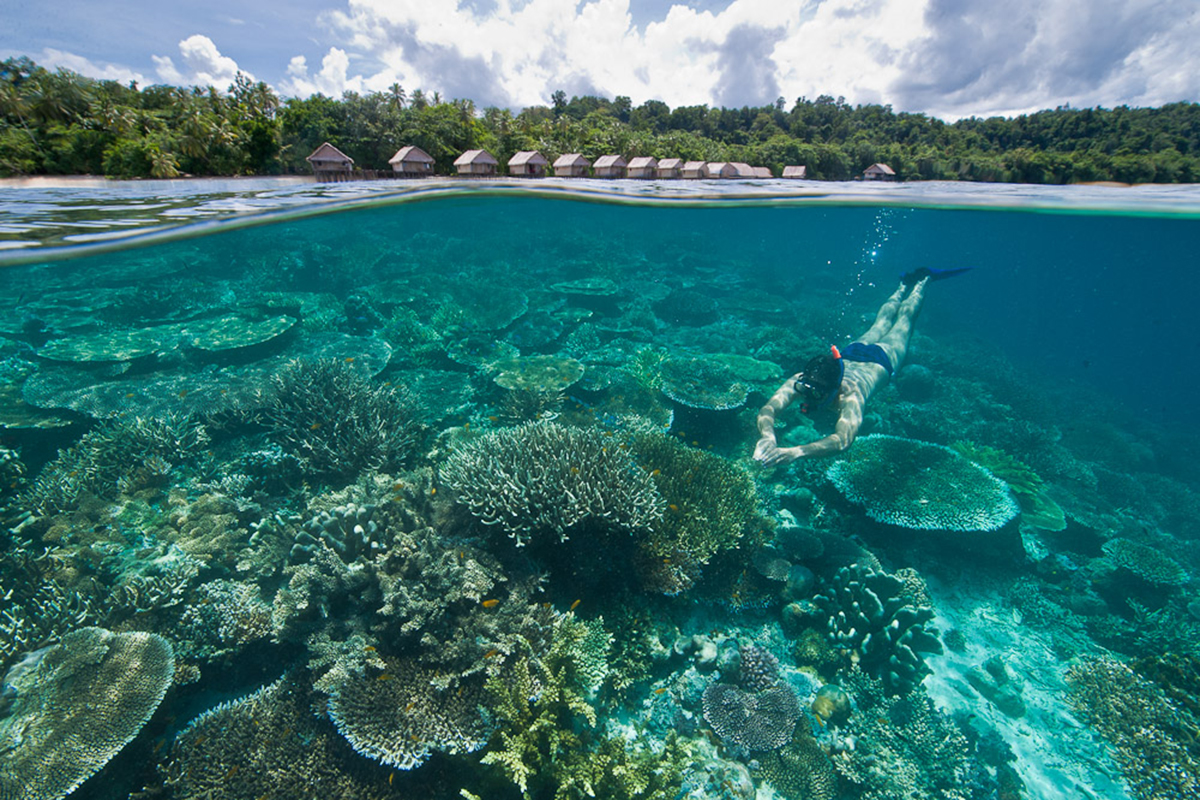 A Quick Guide to Raja Ampat For Non-Divers