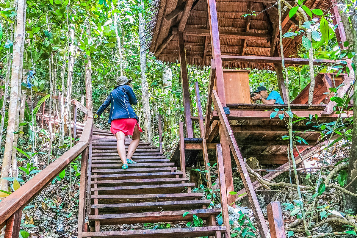 Visit Raja Ampat's Famous Piaynemo Islands