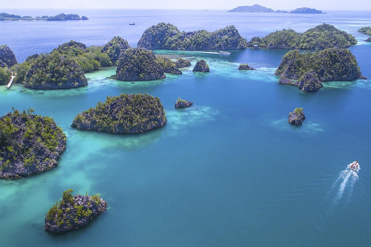 Diving Raja Ampat - The Fam Islands